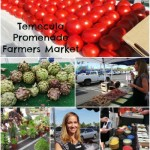 Temecula Farmers Market with Williams-Sonoma